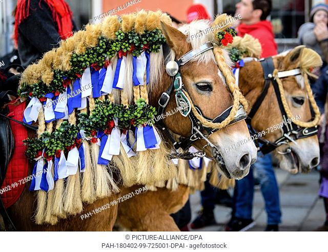 """02 April 2018, Germany, Traunstein: Decorated horses during the traditional Georgiritt ('Saint George's equestrian procession') to the """"""""Ettendorfer Kircherl""""""""..."""