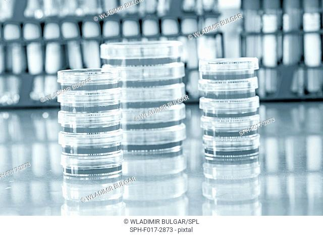 Stacks of petri dishes