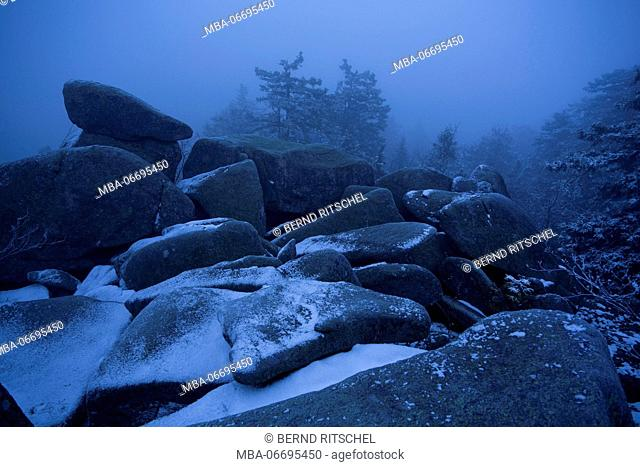 Winter morning on the Leistenklippe, Hohnekamm, Harz, Saxony-Anhalt, Germany