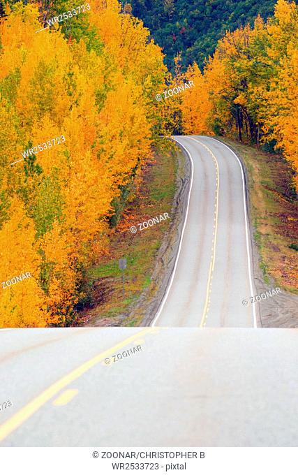 Fall Color Autumn Landscape Alaska Two Lane Road Highway