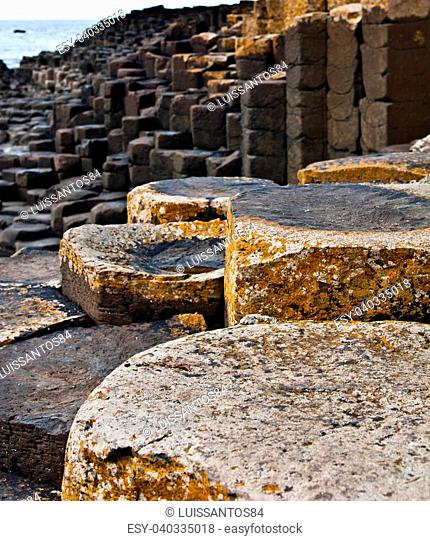 famous Giants Causeway in Northern Ireland (UNESCO World Heritage Site) (shallow DOF)