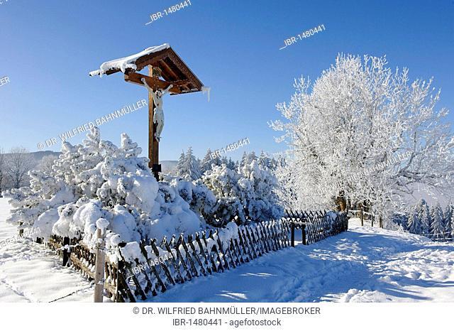 Crucifix, trees, frost, Stadlberg near Miesbach, Upper Bavaria, Bavaria, Germany, Europe