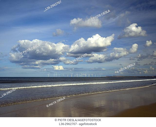 Great Britain. A windfarm of the sea coast