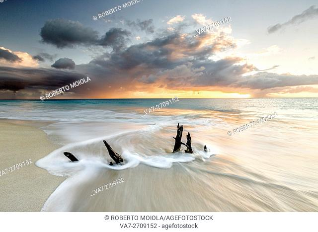 The waves and caribbean sunset frames tree trunks on Ffryers Beach Antigua and Barbuda Leeward Islands West Indies