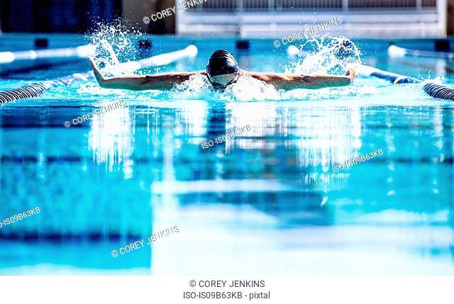 Swimmers doing butterfly stroke in lane
