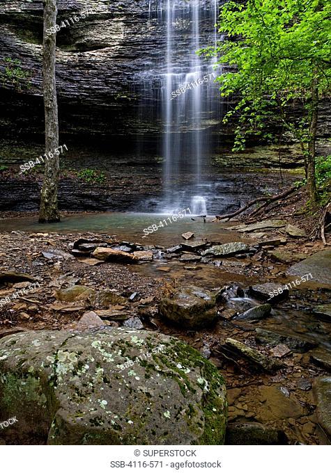 Waterfall in a forest, Cornelius Falls, Arkansas, USA
