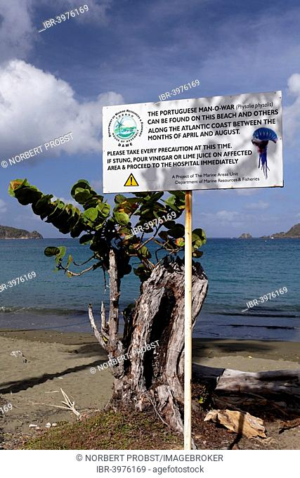 Warning sign on the beach, warning of Portuguese Man O'War (Physalia physalis), which delivers a painful sting, in the sea, Tobago, Trinidad and Tobago