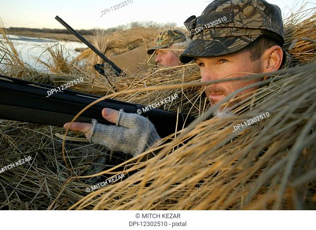 Waterfowl Hunter In Blind