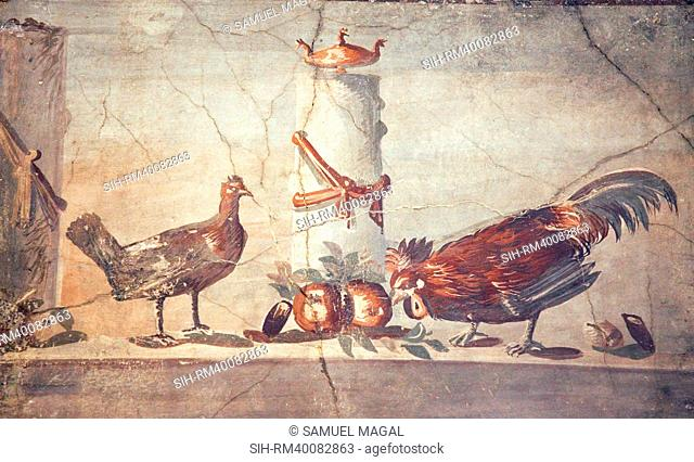 Italy, Naples, Naples National Archeological Museum, Rooster and Hen