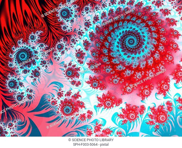 Julia fractal. Computer-generated image derived form a Julia Set