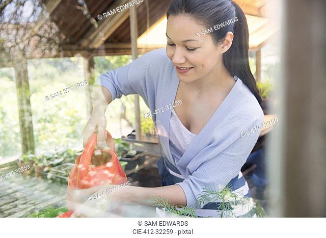 Smiling woman gardening with watering can in greenhouse