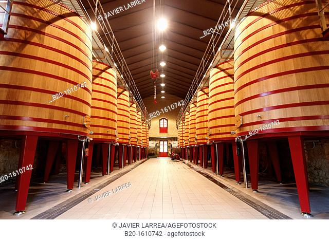 Barrels of wine making, Marques de Riscal winery, Elciego, Rioja Alavesa, Alava, Basque Country, Spain