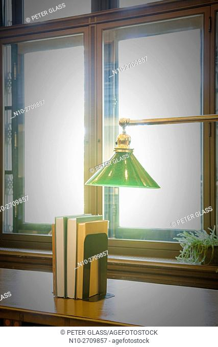 Lamp and books in front of a window