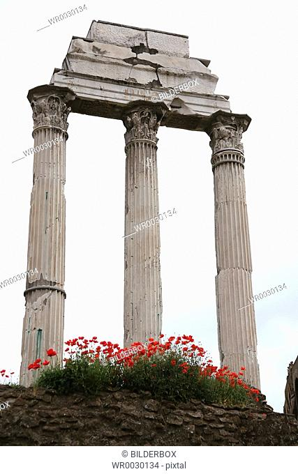 Rome, Italy, Temple of Castor and Pollux