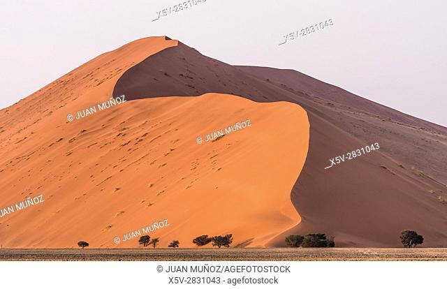 Sossusvlei dunes. Namib-Naukluft Park. Namib Desert. Namibia. Africa