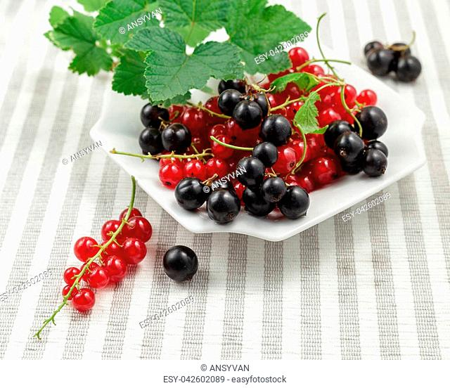 Freshly collected ripe redcurrants and blackcurrants with leaves on plate over striped textile background. Top view
