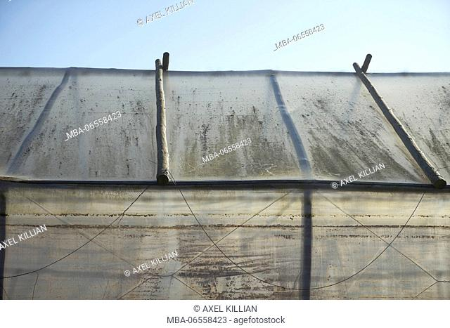 Old greenhouse, roof and wall with fabric, blue sky