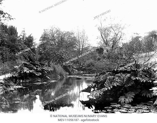 The Lake, Phoenix Park, Dublin - a view of the lake. (Location: Republic of Ireland; County Dublin; Dublin)