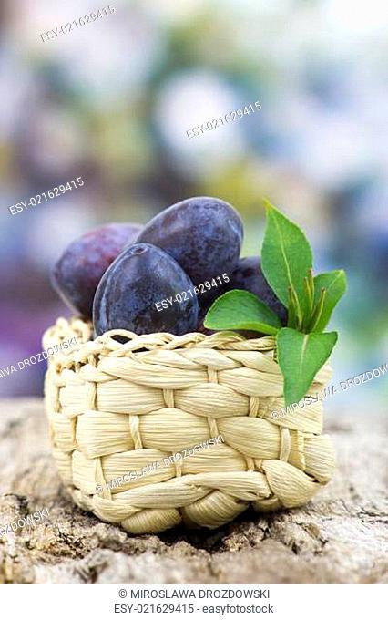 fresh plums