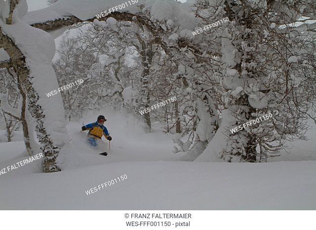 Japan, Hokkaido, Rusutsu, Man skiing through trees