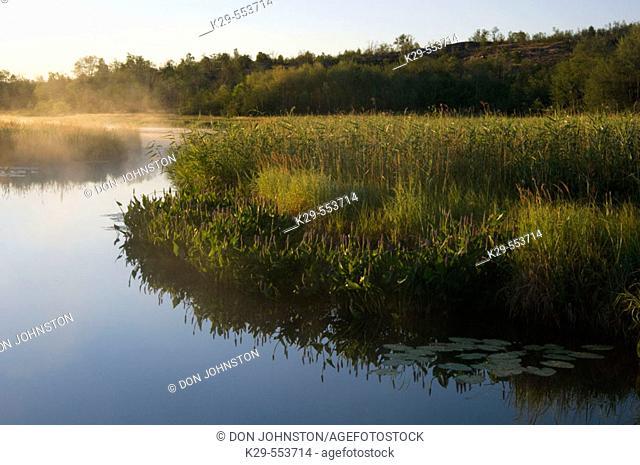 Robinson Lake and creek at dawn. Sudbury, Ontario, Canada