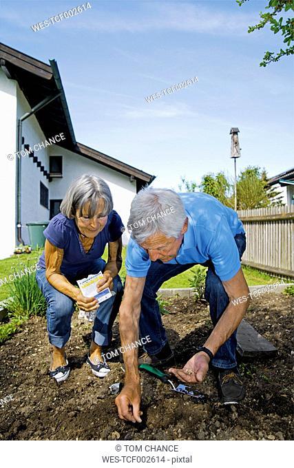 Germany, Bavaria, Senior couple seedling in garden