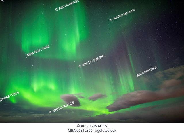 Aurora Borealis or Northern Lights, Lapland, Sweden