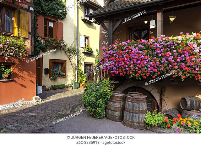 small old village Eguisheim, Alsace, France, narrow lane and winery with wooden barrels