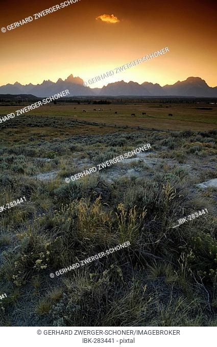 Farm land in front of the Grand Teton range, Grand Teton National Park, Wyoming, United States of America