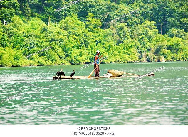 Side profile of a fisherman standing on a bamboo raft in a river, XingPing, Yangshuo, Guangxi Province, China
