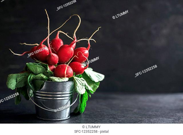 Radishes in a small metal bucket on dark background