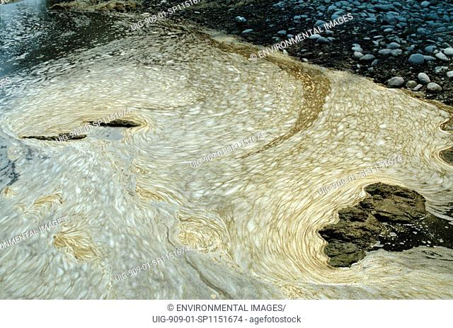 ITALY. River Po, vicinity Casale Monferrato. Foam caused by chemical fertilizers and sewage illustrates the heavy impact of intensive farming along the Po