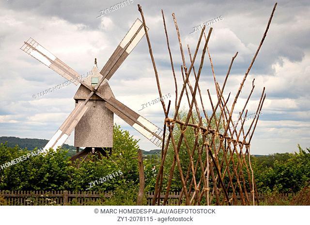 Field scene with windmill Detmold, Germany
