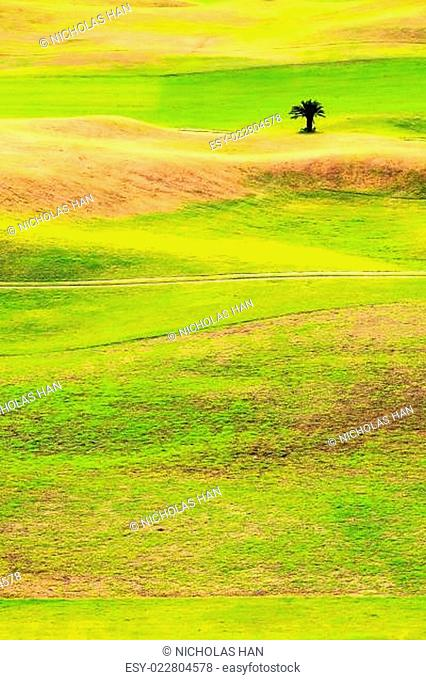Beautiful golf place with nice background