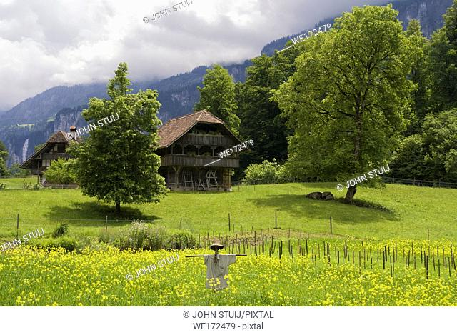 Scarecrow in a meadow in front of farmbuildings in the open air museum Ballenberg near Brienz in Switzerland