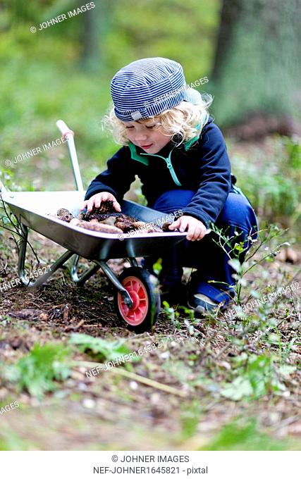 Boy in forest with wheel-barrow