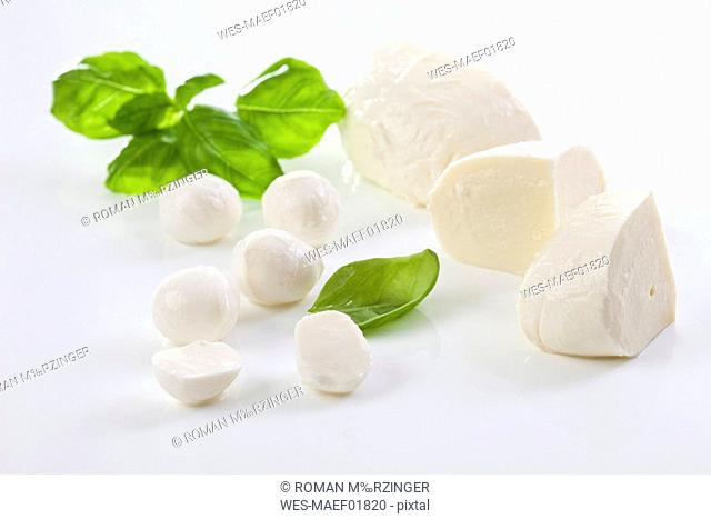 Mozzarella cheese and basil leaves