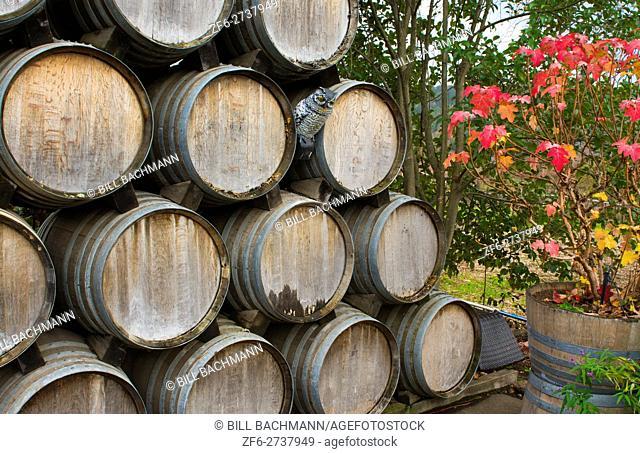 Sonoma Valley California Kunde Winery barrels of wine winery vineyards abstract Napa Valley Kenwood CA