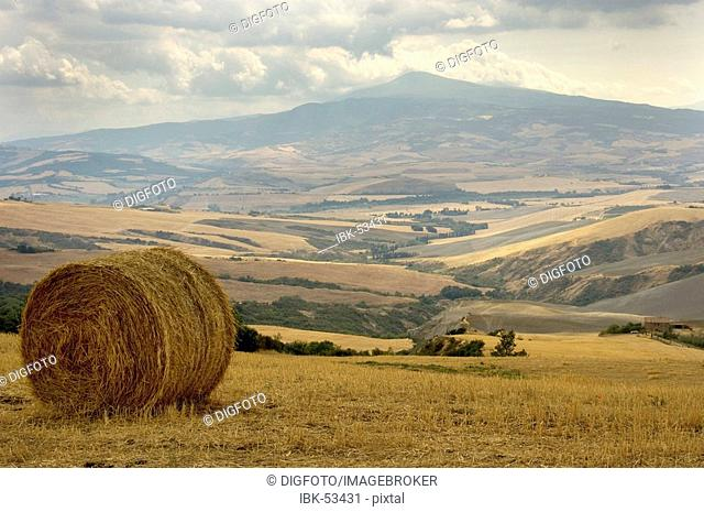 Bale of straw and fields in front of Monte Amiata, Val d'Orcia, Tuscany, Italy