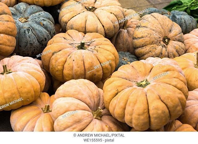 Pumpkins for sale in Korean market in Busan, South Korea