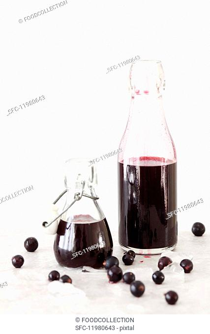 Blackcurrant and vanilla syrup in bottles