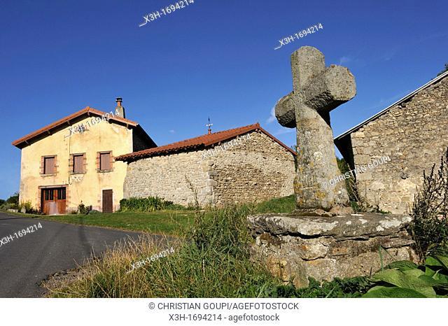 Saint-Victor sur Arlanc, Livradois-Forez Regional Nature Park, Haute-Loire department, Auvergne region, France, Europe