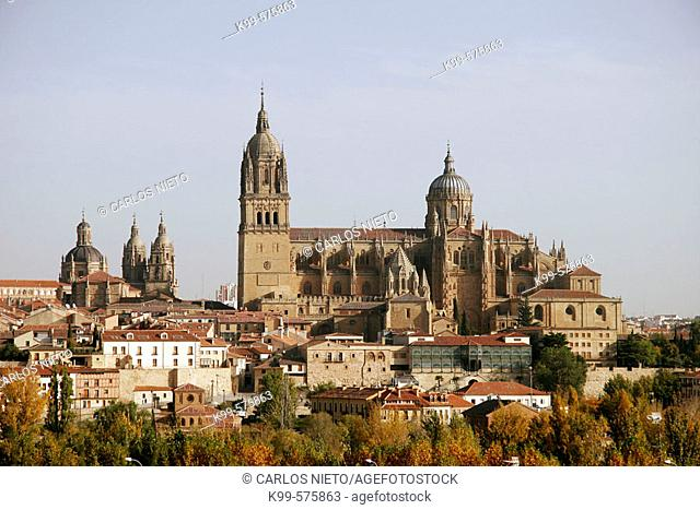 View of old and new cathedrals, Salamanca. Castilla-León, Spain