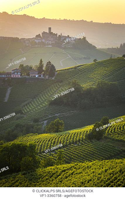 Serralunga d'Alba, Barolo wine region, vineyards. Langhe, Piedmont, Italy