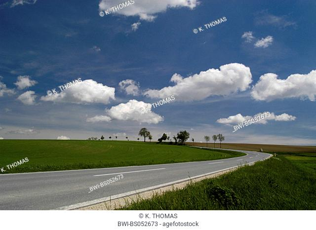 curvy road, fields, avenue, white clouds in blue sky, Austria, Lower Austria, Weinviertel