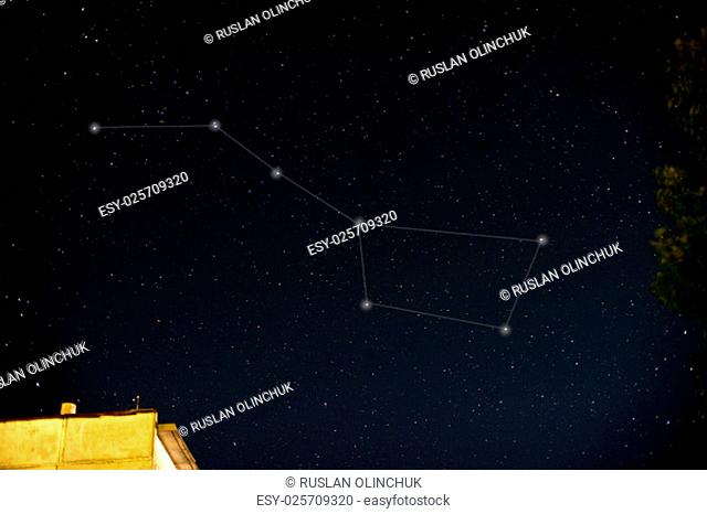 Constellations. Ursa Major (Great bear) on the night sky