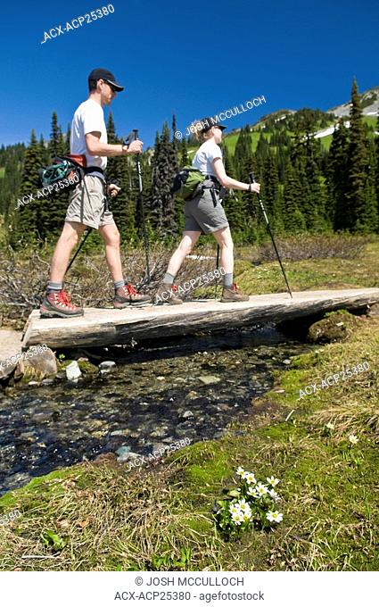 HIkers en Route to the Black Tusk in Garibaldi Provincial Park near Whistler BC