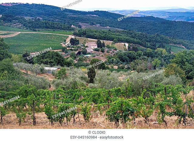 Typical rural landscape in the region of Chianti, in Tuscany, Italy, along the road from Castellina to Poggibonsi
