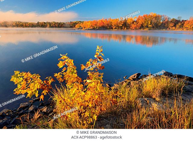 Vermilion River in autumn with fog Whitefish Ontario Canada