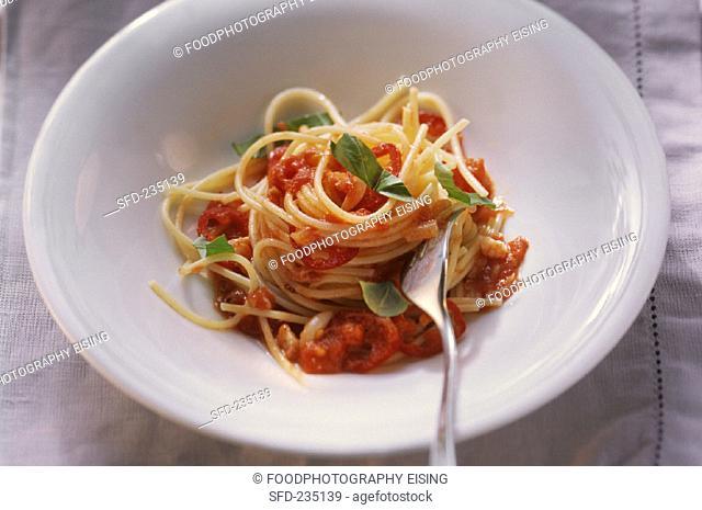 Spaghettini with tomato and bacon sugo and fresh basil